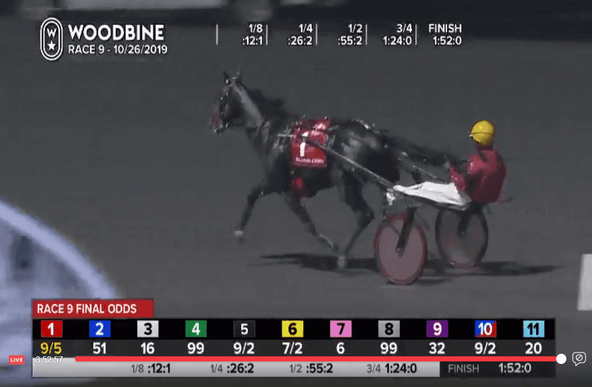 FireShotScreenCapture080-12BreedersCrown-Publications-www_facebook_com.png