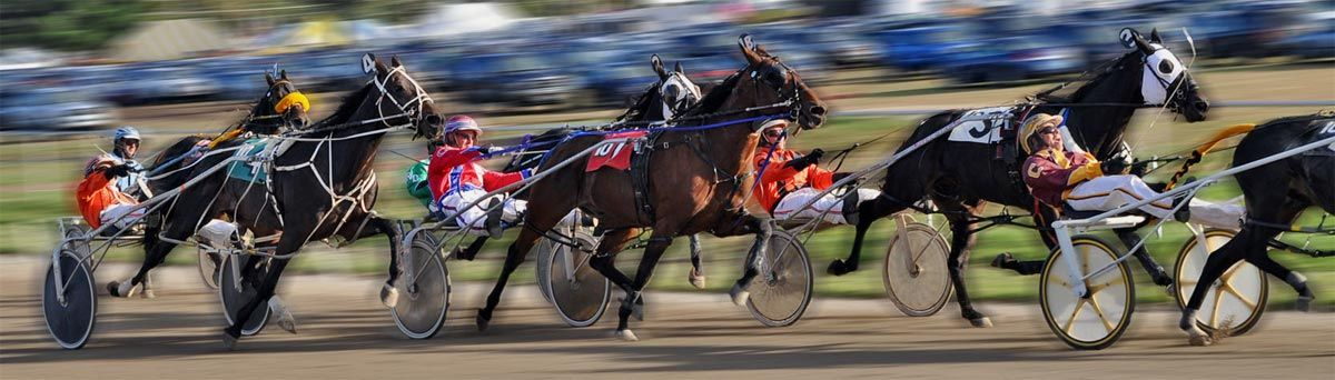 harness-racing-otb.jpg