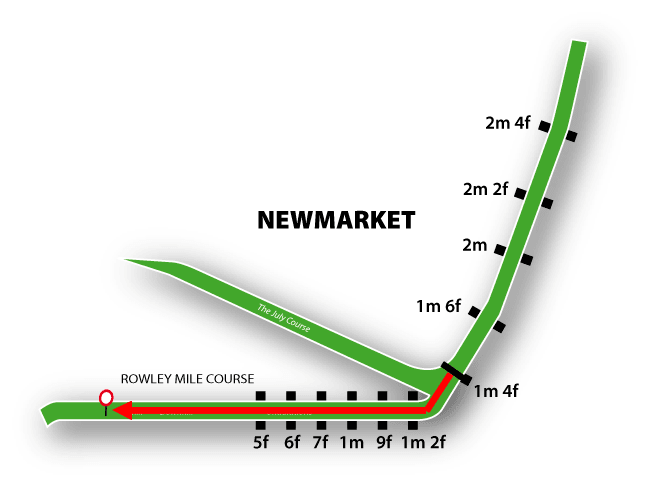 newmarketft.png