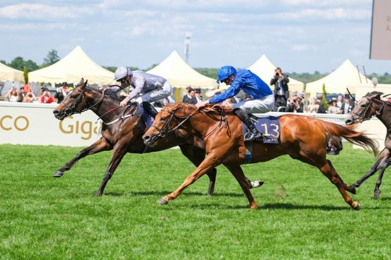 20190623-jersey-stakes.jpg