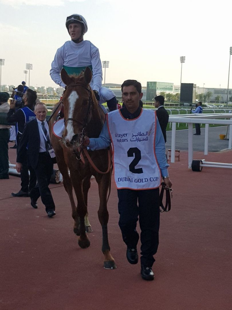 call-the-wind-20190330-dubai-gold-cup-02.jpg
